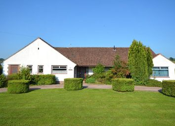 Thumbnail 5 bed bungalow for sale in Cowley Bridge Road, Exeter