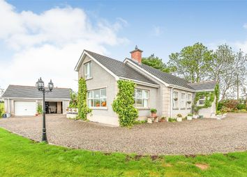 Thumbnail 4 bed detached bungalow for sale in Tullyreagh Road, Glarryford, Ballymena, County Antrim