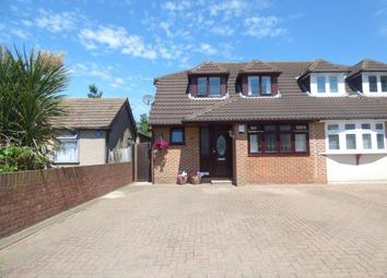 Thumbnail 4 bed bungalow for sale in Rainham, Essex, .