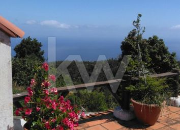 Thumbnail 3 bed finca for sale in Caminho Ribeiro Louro 9100-197 Santa Cruz, Santa Cruz, Santa Cruz