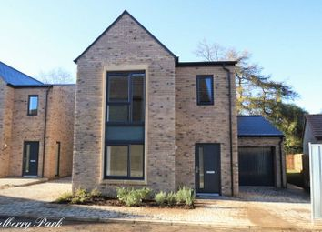 Thumbnail 4 bed detached house to rent in Bradford Road, Combe Down, Bath