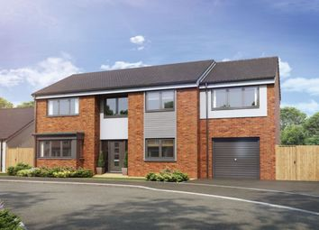 Thumbnail 4 bed detached house for sale in The Lawns, Ladgate Lane, Middlesbrough