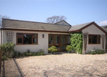 Thumbnail 4 bed detached bungalow for sale in Wiltshire Road, Bransgore, Christchurch, Dorset