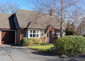 Thumbnail 2 bed link-detached house for sale in Oak Hill, Alresford