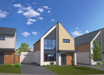Thumbnail 4 bed property to rent in Catherines Close, Exeter