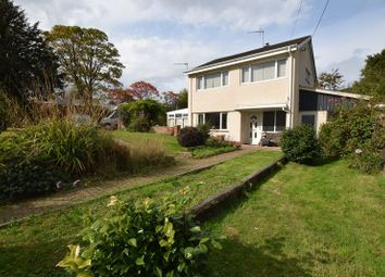 Thumbnail 3 bed property for sale in New Road, Lifton
