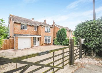 Thumbnail 4 bedroom detached house for sale in Holybread Lane, Little Baddow, Chelmsford