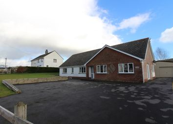 Thumbnail 3 bedroom detached bungalow for sale in Crugybar, Llanwrda