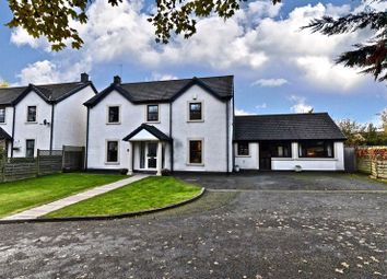 Thumbnail 4 bed detached house for sale in 6 Marsh House Gardens, Burgh-By-Sands, Carlisle