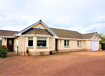 Thumbnail 3 bed detached bungalow for sale in Meadow Bank Rise, Moffat