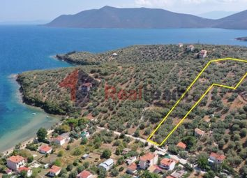 Thumbnail Land for sale in Agia Marina, Pteleos, Magnisia, Greece