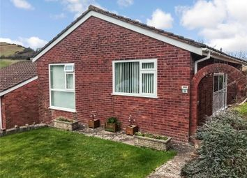 Thumbnail 3 bed bungalow for sale in Hillington, Ilfracombe