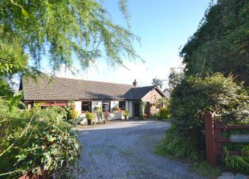 Thumbnail 3 bed detached bungalow for sale in Heol Dinefwr, Foelgastell, Llanelli
