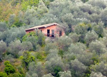 Thumbnail 1 bed country house for sale in Country House In Working Progress In Sunny Location, Ceriana - Via Valle Armea Nord - Sr 502, Italy