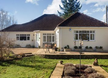 Thumbnail 4 bedroom detached bungalow for sale in Keysworth, Wareham