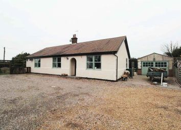 Thumbnail 4 bed detached bungalow for sale in Back Lane, Lound, Lowestoft