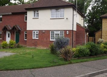 Thumbnail 1 bed detached house to rent in Langdale, White Court, Braintree