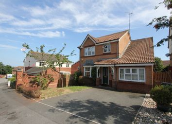 Thumbnail 4 bed detached house to rent in Whitebeam Close, Paignton, Devon