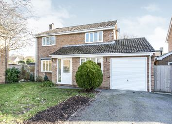 Thumbnail 4 bed detached house to rent in Holmwood Garth, Hightown, Ringwood