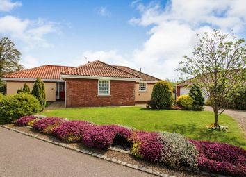 Thumbnail 4 bed detached bungalow for sale in Selwyn Gardens, Pulham Market, Diss