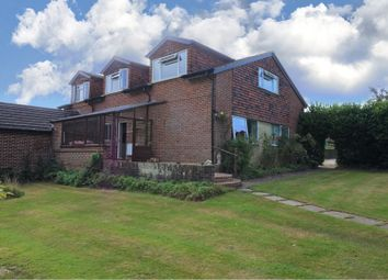 Thumbnail 4 bed semi-detached house for sale in Northchapel, Petworth