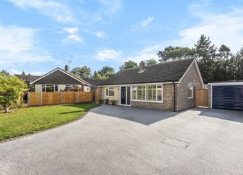 Thumbnail 2 bed detached bungalow for sale in Stafford Road, Petersfield