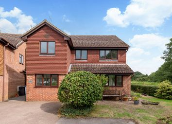 Thumbnail 4 bed detached house to rent in Khartoum Road, Witley, Godalming