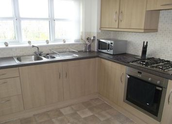Thumbnail 4 bed detached house to rent in Raines Court, Middlesbrough