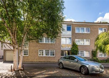 Thumbnail 2 bed flat for sale in Chester Close South, London
