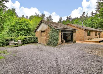 Thumbnail 3 bed detached bungalow for sale in Railway Terrace, Nantyglo, Ebbw Vale