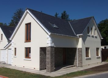 Thumbnail 4 bed detached house to rent in Bridge Road, Ballasalla, Isle Of Man