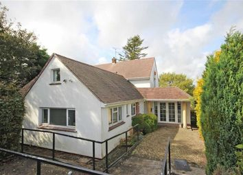 Thumbnail 3 bed detached bungalow for sale in Holwell Road, Central Area, Brixham