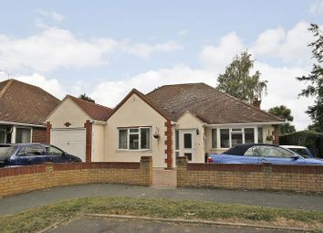 Thumbnail 5 bed detached bungalow to rent in Little Orchard, Woodham