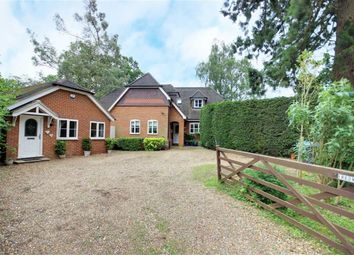 Thumbnail 4 bed detached house for sale in The Drive, Brookmans Park, Hatfield