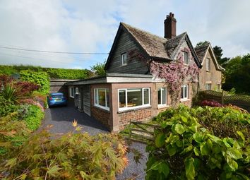 Thumbnail 2 bed semi-detached house for sale in Stoodleigh, Tiverton