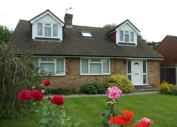 Thumbnail 3 bed detached bungalow to rent in Limden Close, Wadhurst