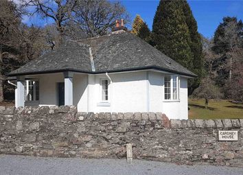 Thumbnail 2 bed detached house to rent in The Lodge, Cardney, Butterstone, Dunkeld, Perthshire