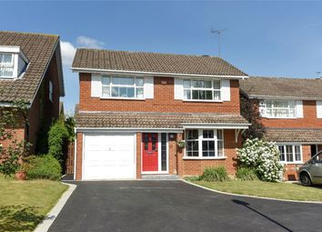 Thumbnail 4 bed detached house for sale in Overbury Avenue, Wokingham, Berkshire