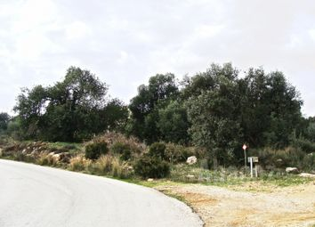 Thumbnail Land for sale in Alcantarilha, Silves, Algarve, Portugal