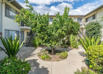 Thumbnail 1 bed apartment for sale in Goleta, California, United States Of America