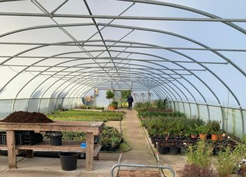 Thumbnail Commercial property to let in Southfields Farm, West Parley, Ferndown