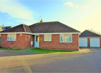 Thumbnail 3 bedroom detached bungalow for sale in Suffolk Avenue, Colchester