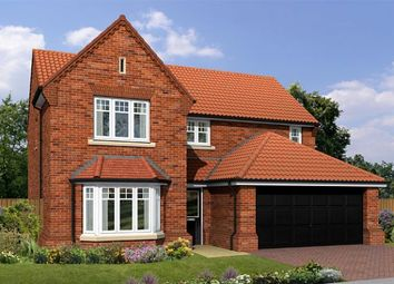 "Thumbnail 4 bedroom detached house for sale in ""The Warkworth"" at Milby, Boroughbridge, York"