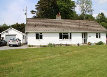 Thumbnail 4 bed detached bungalow for sale in Cwmystwyth, Aberystwyth