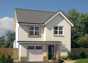 "Thumbnail 3 bedroom detached house for sale in ""The Newton"" at Glasgow Road, Denny"