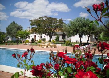 Thumbnail 15 bed finca for sale in Cortijo Campillos, Lora Del Río, Seville, Andalusia, Spain