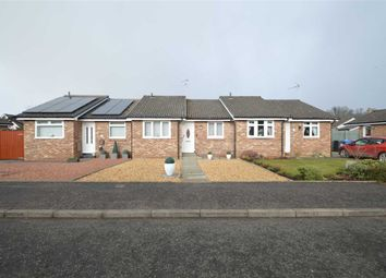 Thumbnail 2 bed bungalow for sale in Dark Brig Road, Crossford, Carluke
