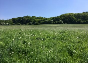 Thumbnail Farm for sale in Coulston, Westbury, Wiltshire