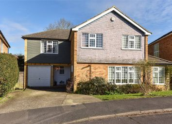 Thumbnail 5 bed detached house for sale in Belmont Drive, Maidenhead, Berkshire