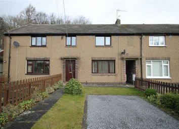Thumbnail 3 bed terraced house to rent in Westfield, Frosterley, County Durham